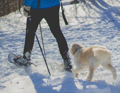 laufen mit schneeschuhen